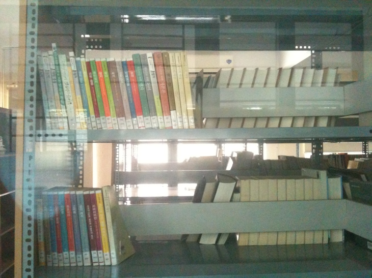 Korean library-I am not allowed to go into the Korean library, so I had to take a photo through the glass window