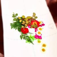 Korean pressed flower art (압화 공예)